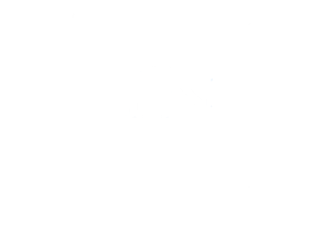 Tennessee Alliance for Kids