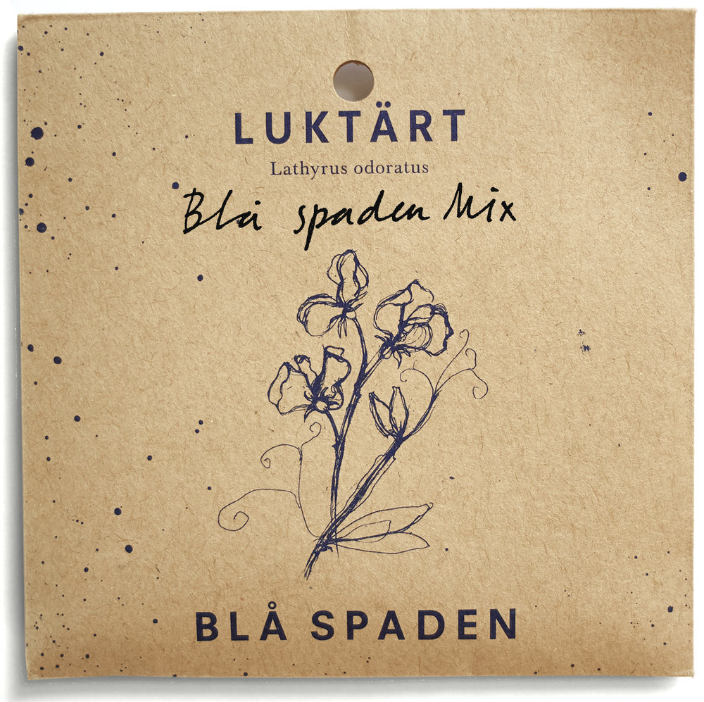 Blå spaden mix  - 'Lovley Lady' ljust blå blom, 'Our Harry' klarblå blom, 'North Shore' mörkt blå blom, 'White Frills' vit blom.
