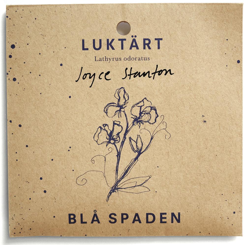 Joyce Stanton - Blålila ärt med krusade blad.