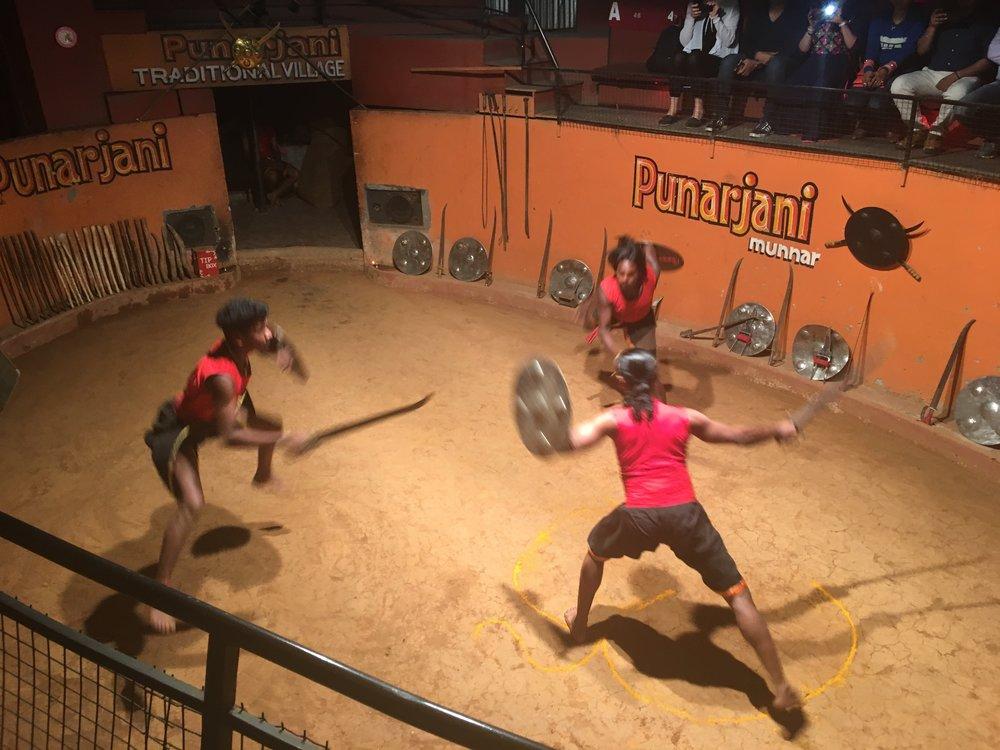 Kalarippayattu (Traditional Martial Arts)