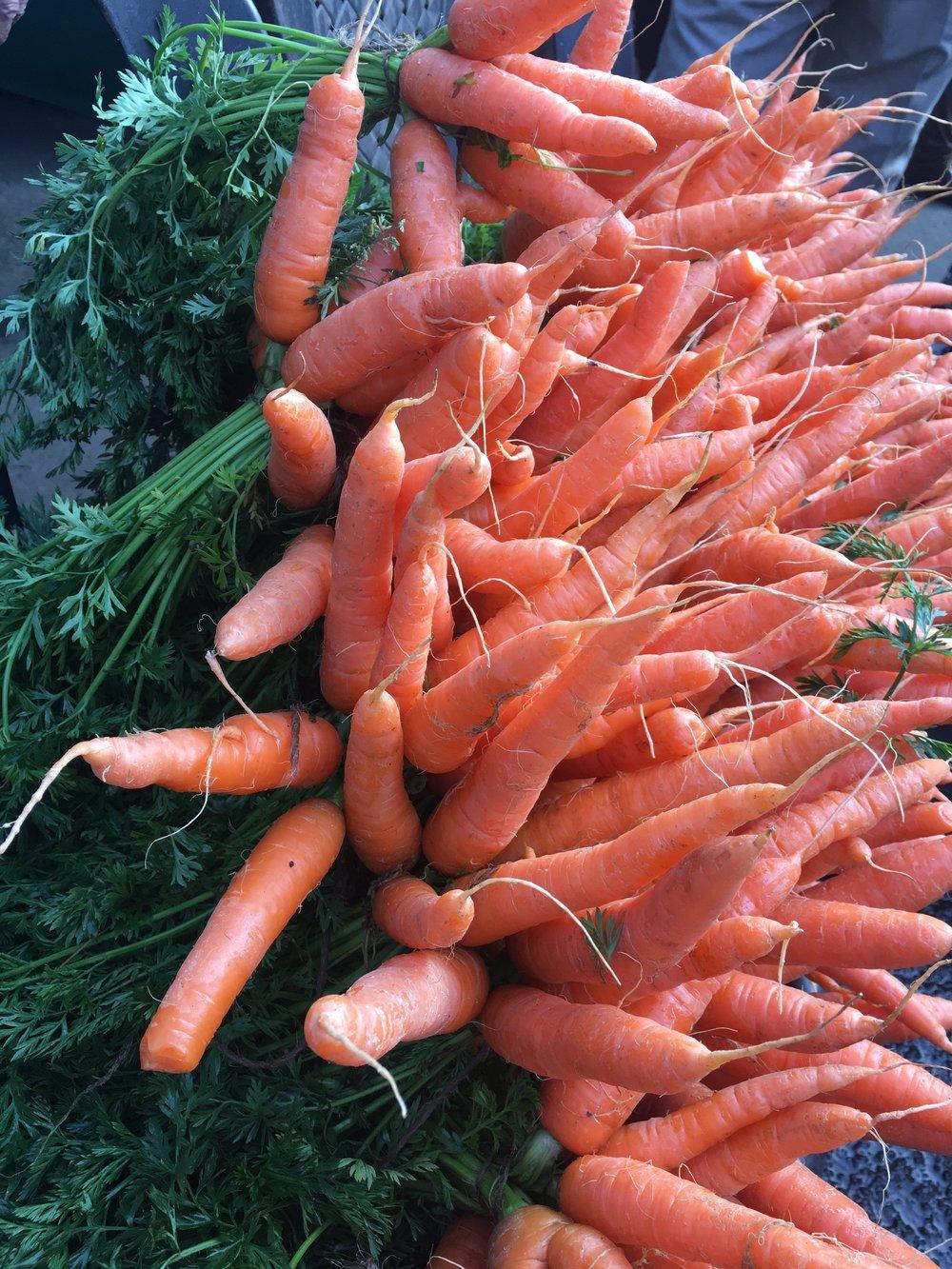 Beautiful Carrots