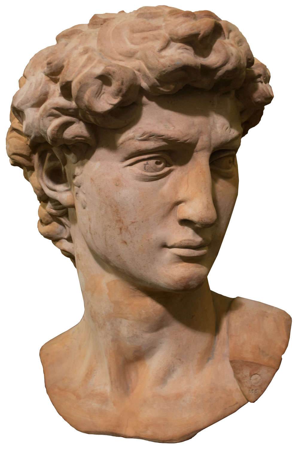 This monumental, terra cotta scale bust of Michelangelo's David (c. 1950 by V. Vincenzo) is one of the items we are donating to the auction benefitting the ICAA.