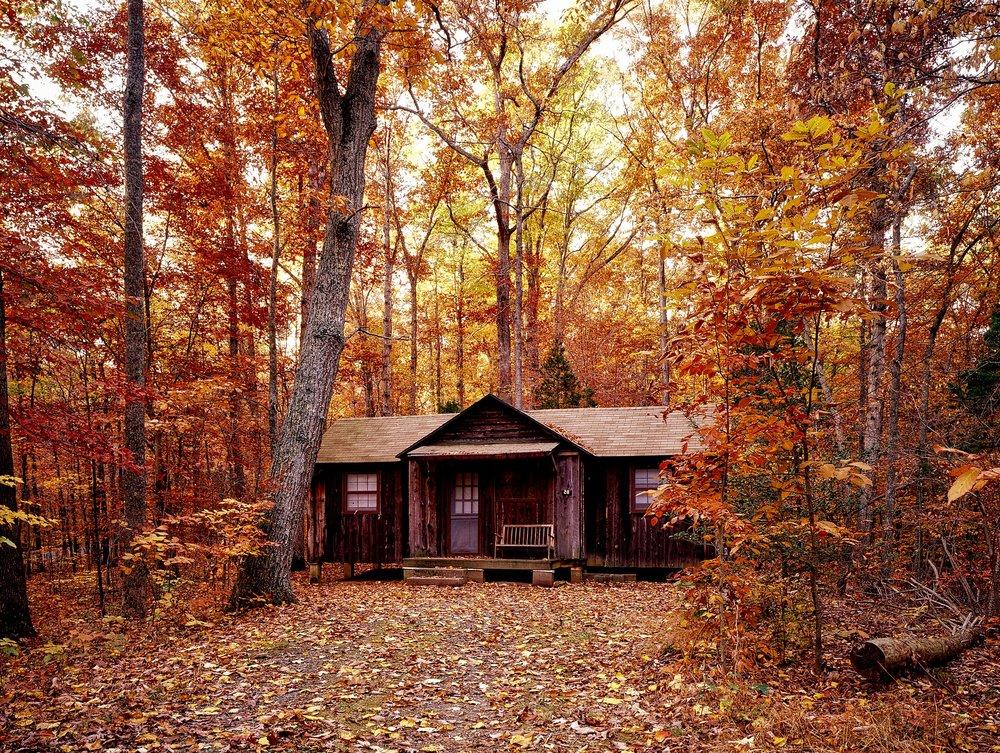 autumn-1740686_1920.jpg