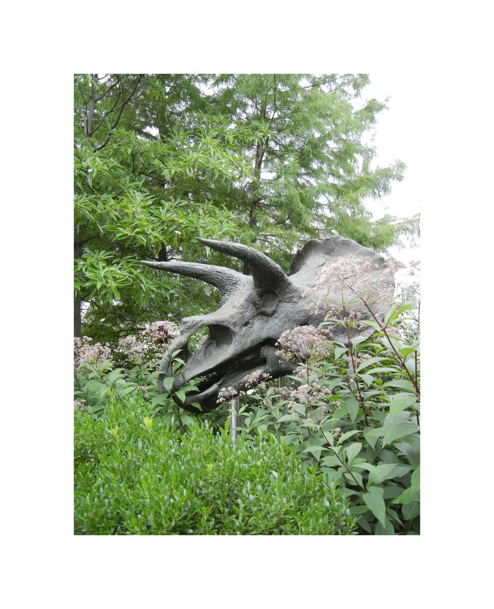 DC_Dinosaur_LR.jpg