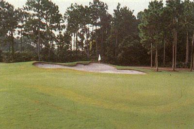 wdw-golf.jpg