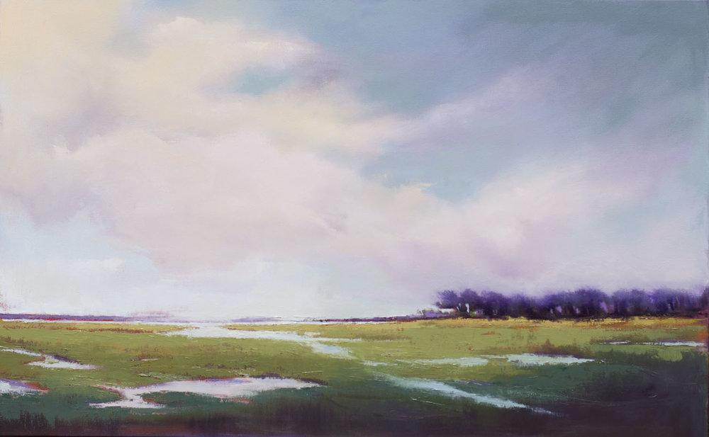 Long Marsh View