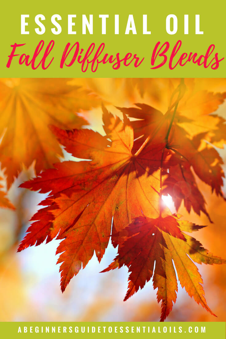 Don't you just love autumn?The crisp air, the beautiful changing leaves, all those pumpkin flavored drinks. Now you can have that scent in your home too - with one of these fall essential oil diffuser blends. And, if you're not sure how to create a blend for your diffuser - I'll show you one simple method that will have you designing your own combinations in no time!