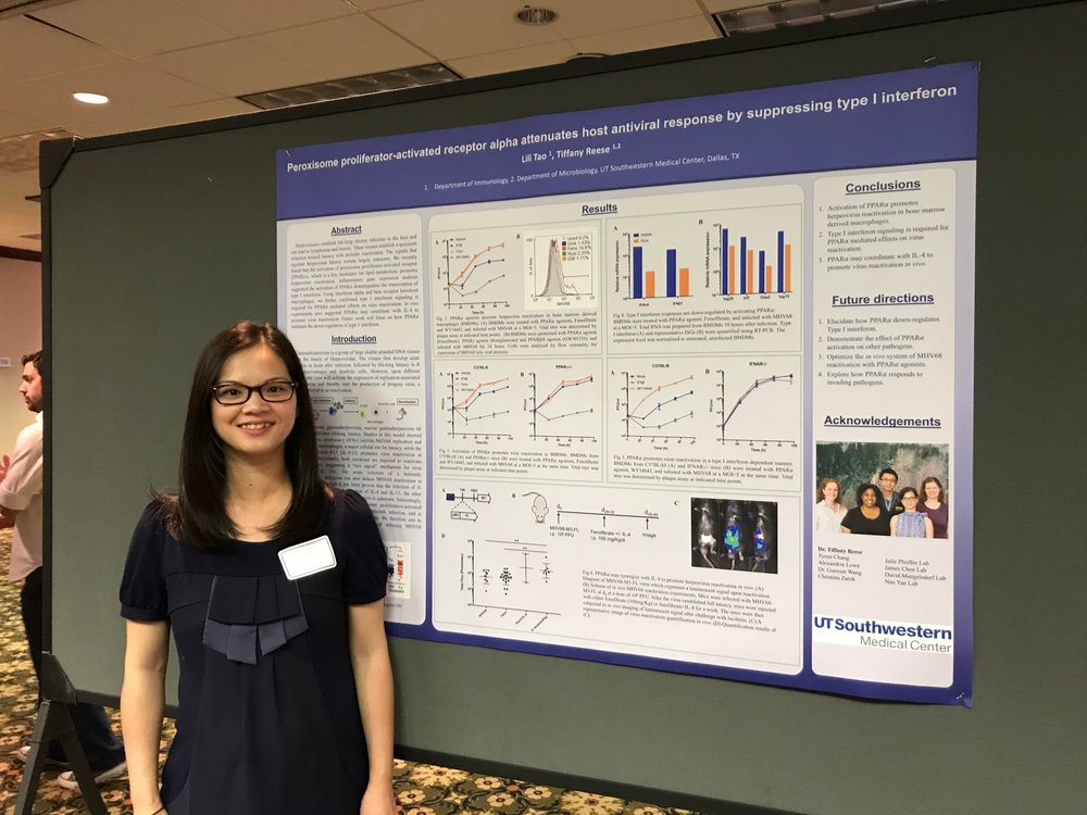Lili presenting her poster at Micro retreat 2017