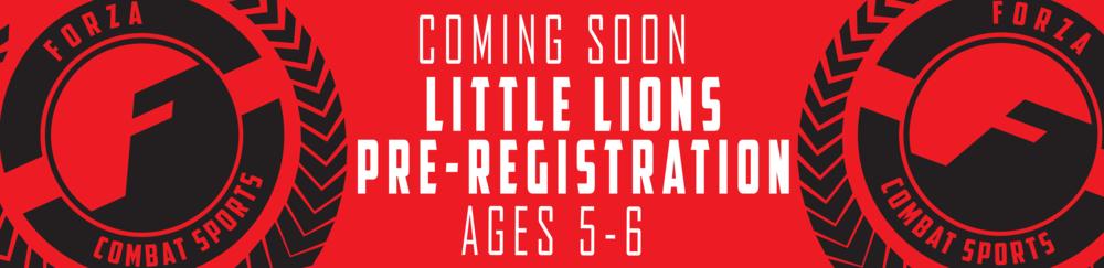 little lions banner_little lions banner.png