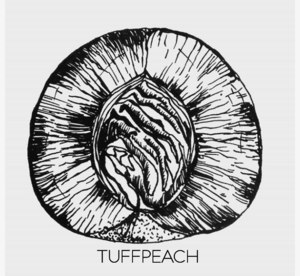 TUFF PEACH CRAFT CO.