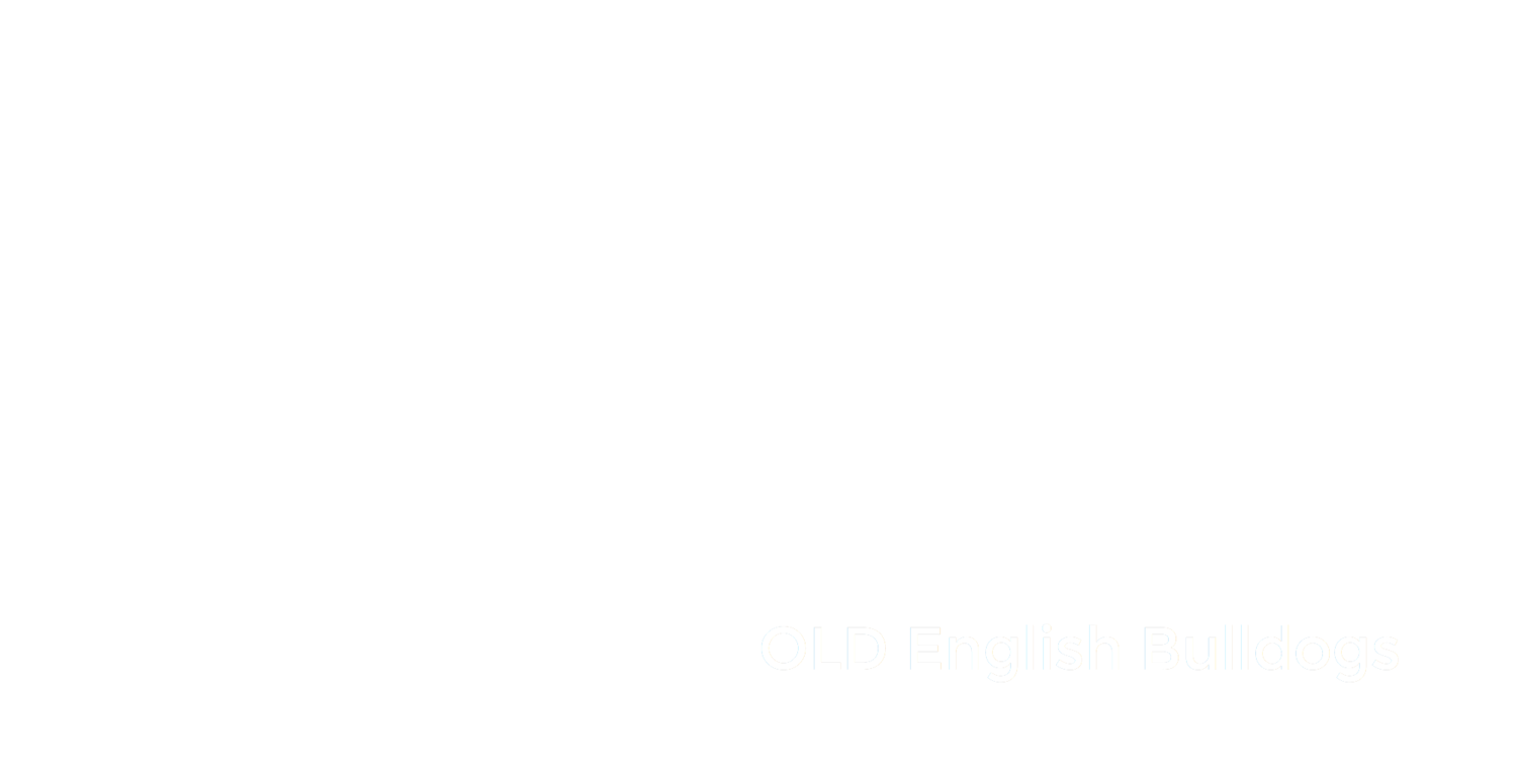 Unique Bulldogs