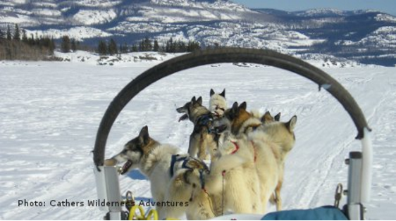 Dog Sledding, Hiking, Boating to Sled Dog Kennel