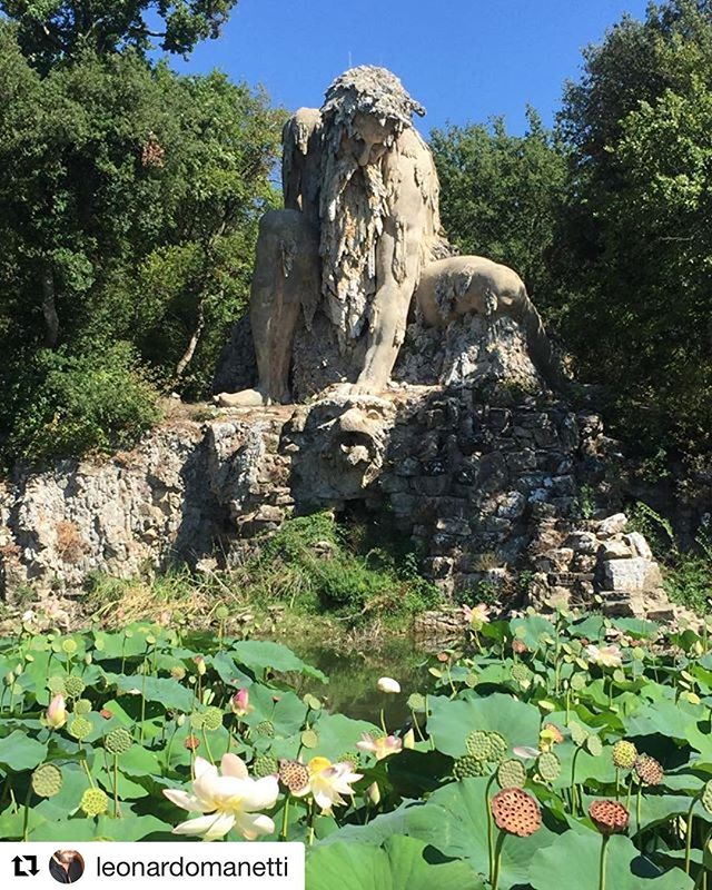 Our bud Leo on holiday, way off the beaten path 💮 @leonardomanetti 💮 ・・・ Il gigante del Gianbologna #firenze #villademifoff #pratolino #ferragosto #unbelievable #art #integrated in #nature #travel #wanderlust #earthart #fineart #contemporaryart #nycgallery #constant #callforart @xasociety link in bio 💮✨🙏🏽✨💮