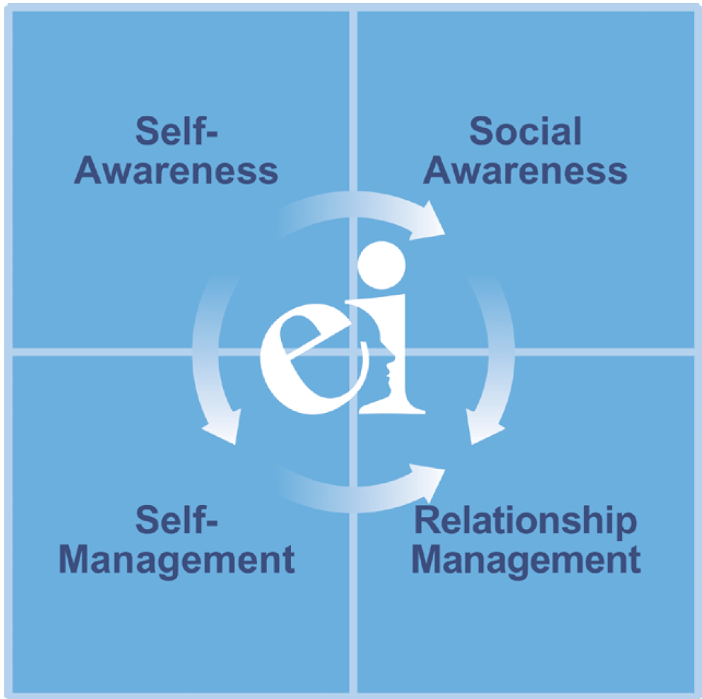 Quicksmars_DFW_FortWorth_Dallas_Leadership_emotional_intelligence_360.png