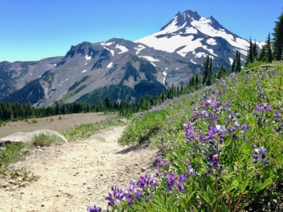 A spontaneous hike that once again entranced by the simplicity of the trail, turned into nearly 1,500 miles walked through Oregon, Washington and Southern California.