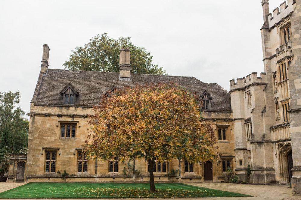 England 2017-Day 7 Oxford Blenheim-0136.jpg