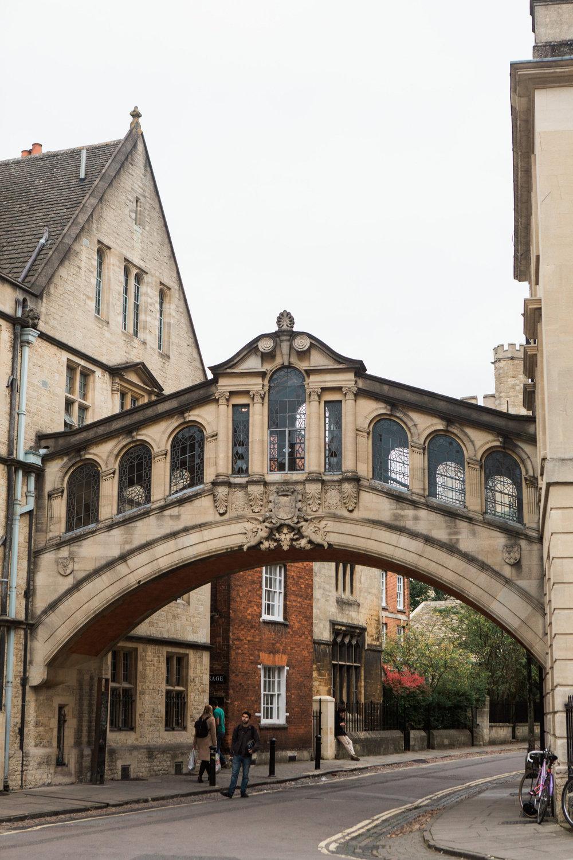 England 2017-Day 7 Oxford Blenheim-0290.jpg