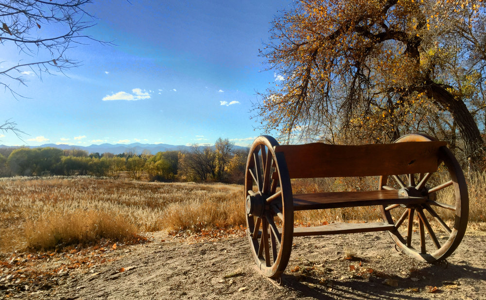 Wagon-wheel bench along the Highline Canal Trail, overlooking the front range in the evening.