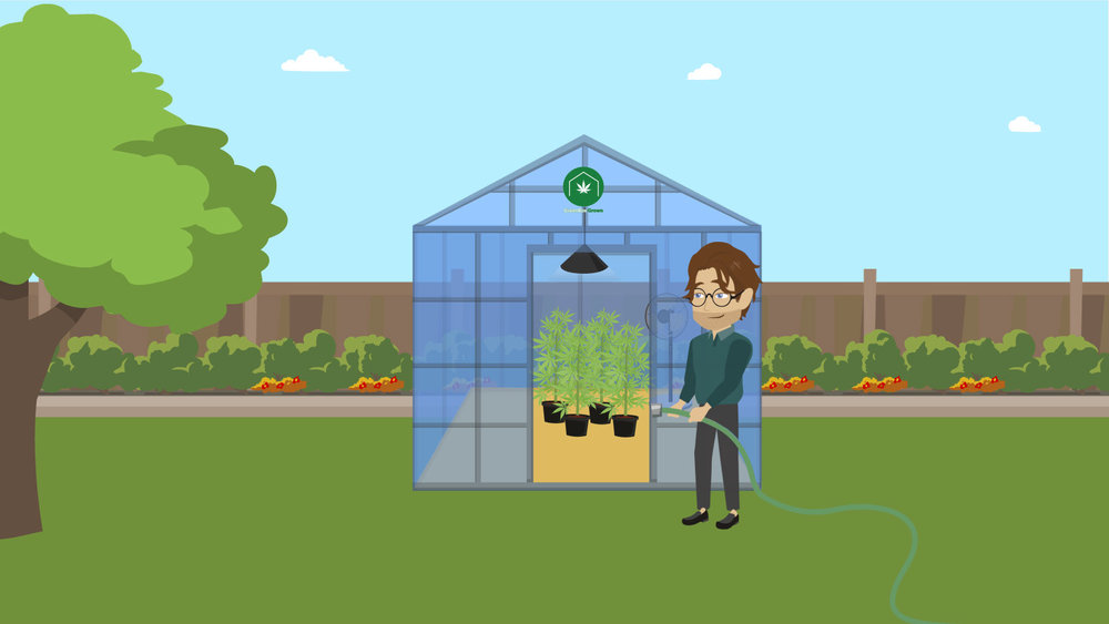 Set up Your Greenhouse.png