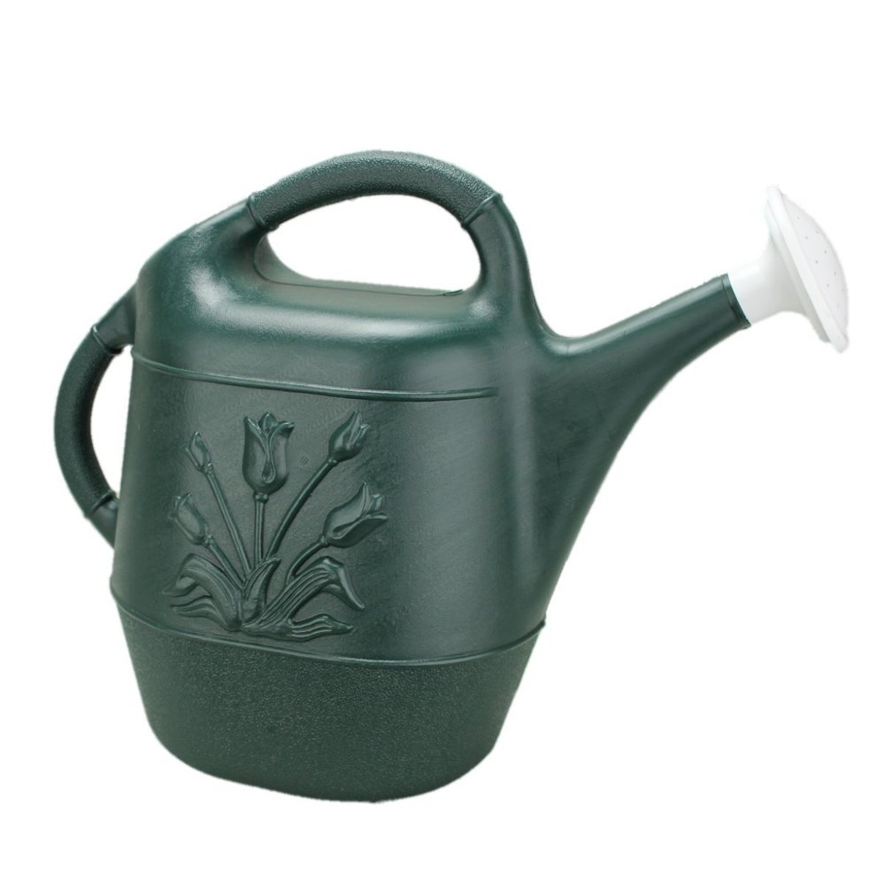 2 Gallon Watering Can