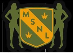 MSNL Seeds Logo