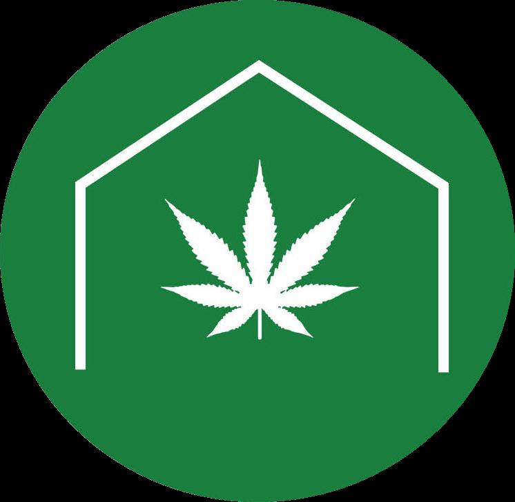 Dr Dabber — Blog — GreenBox Grown
