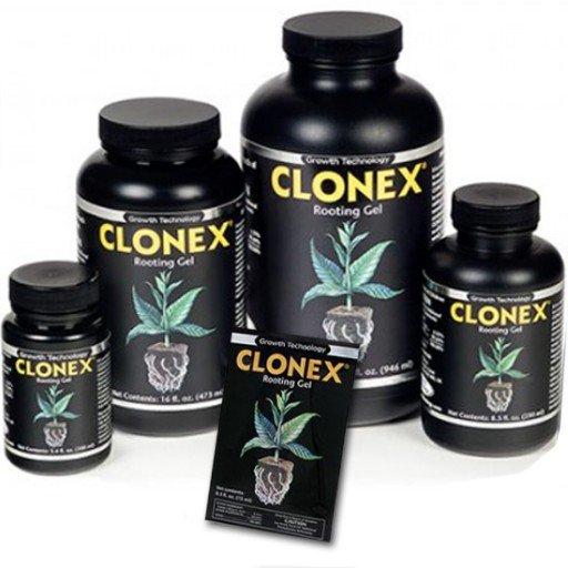 clonexrootgel1.jpg