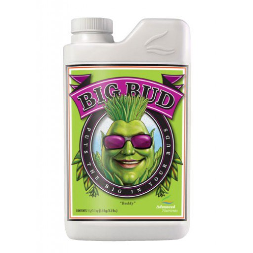 big_bud_1l_bottle_web.jpg