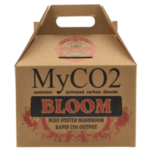 myco2-bloom.png