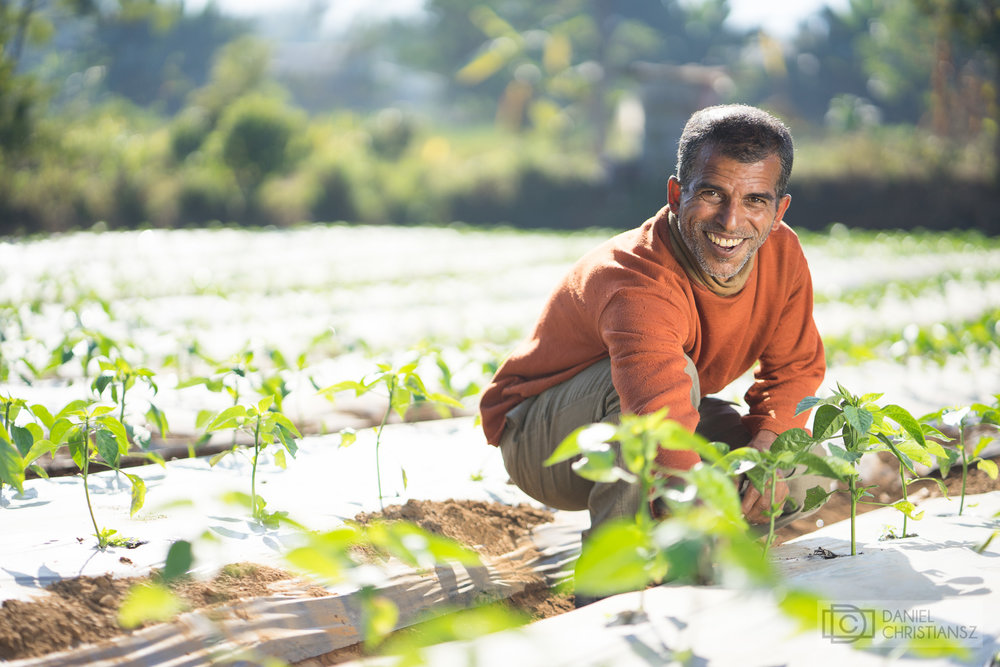 Nepalese Man Growing Vegetables Income Enhancement