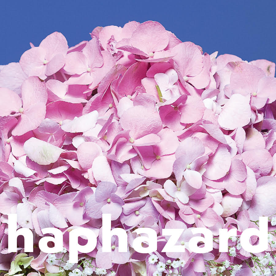 hapharzard-logo.jpeg