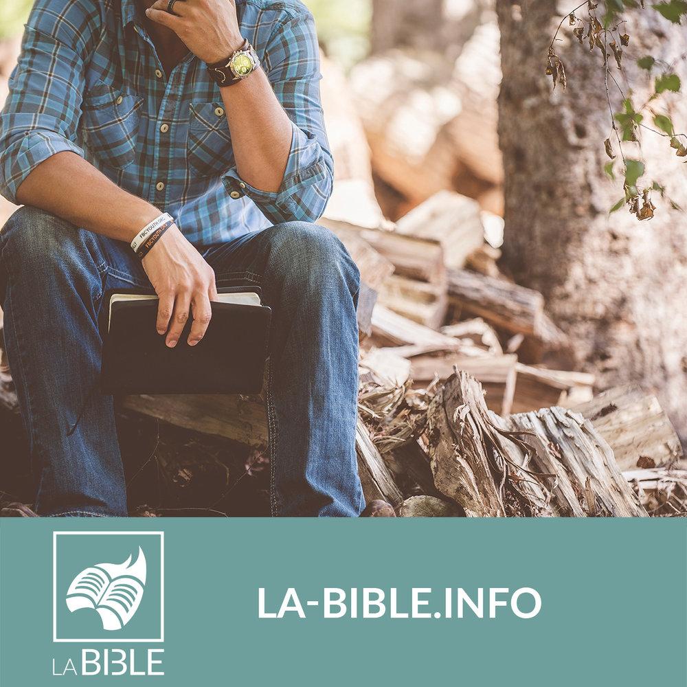 bibledigital_labible.jpg