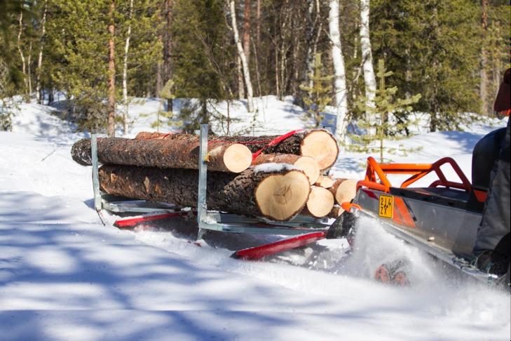 Timber Sleigh