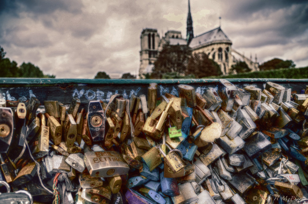 Notre Dame looking from the bridge with love locks.