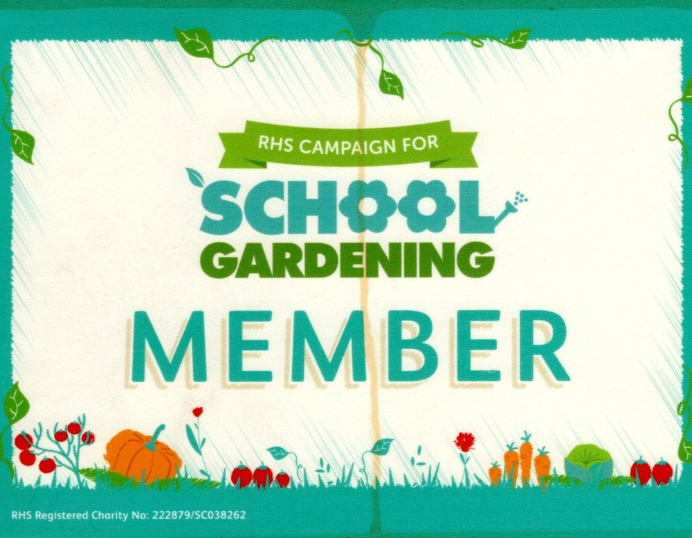 We are now a fully paid up member of the Royal Horticultural Society Campaign for School Gardening.