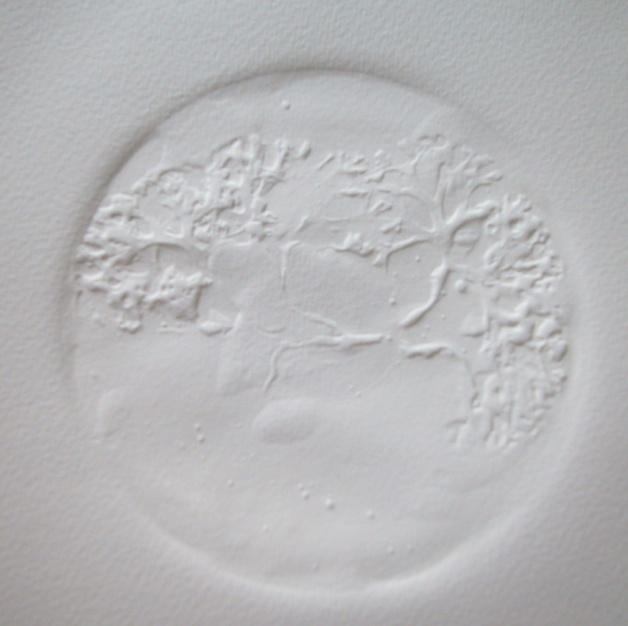 Altre alghe II, 2011