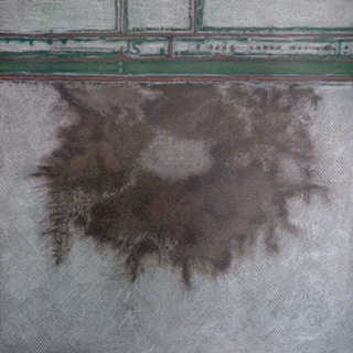 Rann of Kutch IV, 2014