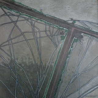 Rann of Kutch VI, 2014