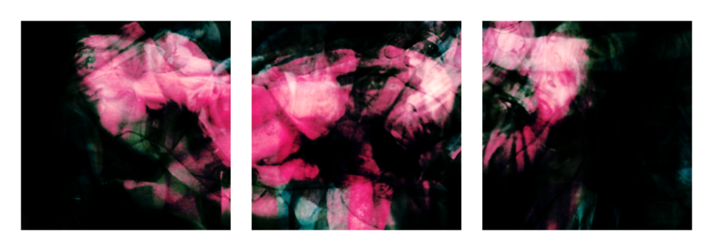 Overdose 21.1-3 (Triptych), 2008