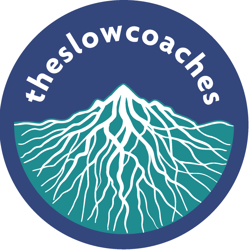 The Slow Coaches