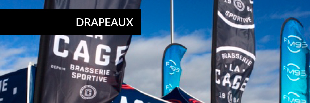 ICON-product-accueil-drapeaux.jpg