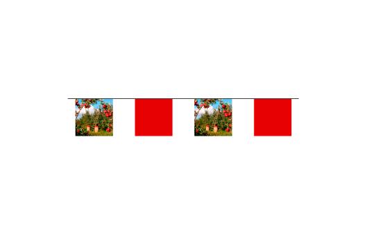 Azur-Impression-affichage-de-rue-fanions-sur-corde-carré-1.jpg
