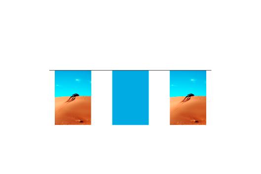 Azur-Impression-affichage-de-rue-fanions-sur-corde-rectangle-1.jpg