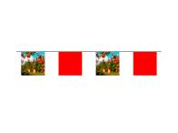 Azur-Impression-affichage-de-rue-fanions-sur-corde-carré.jpg