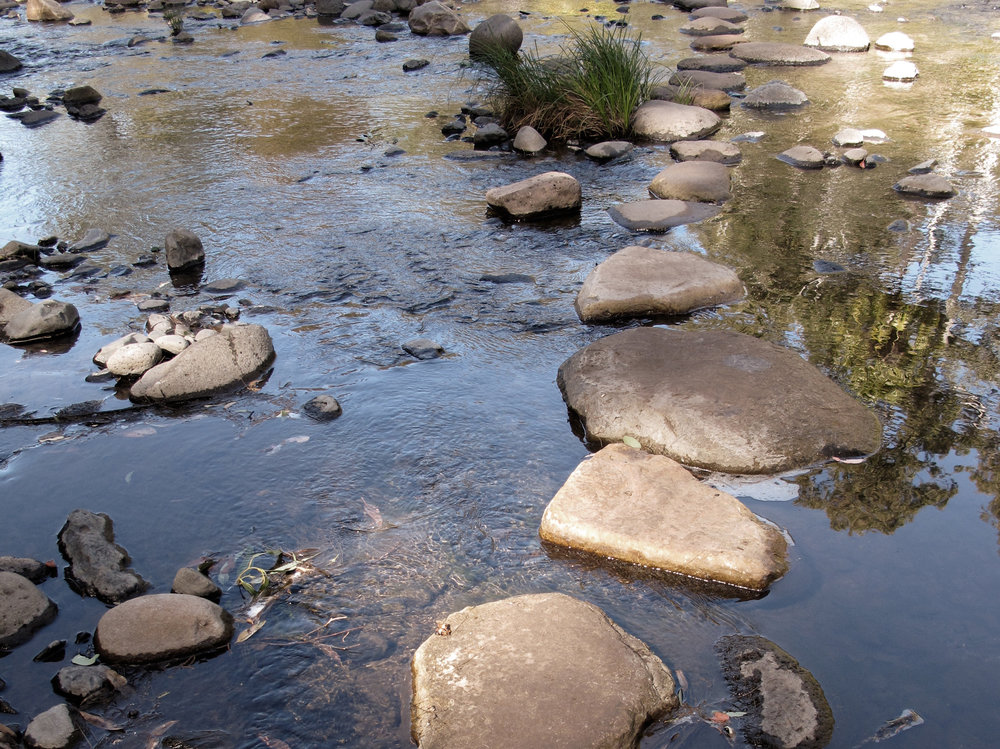 stepping-stones__crop.jpg