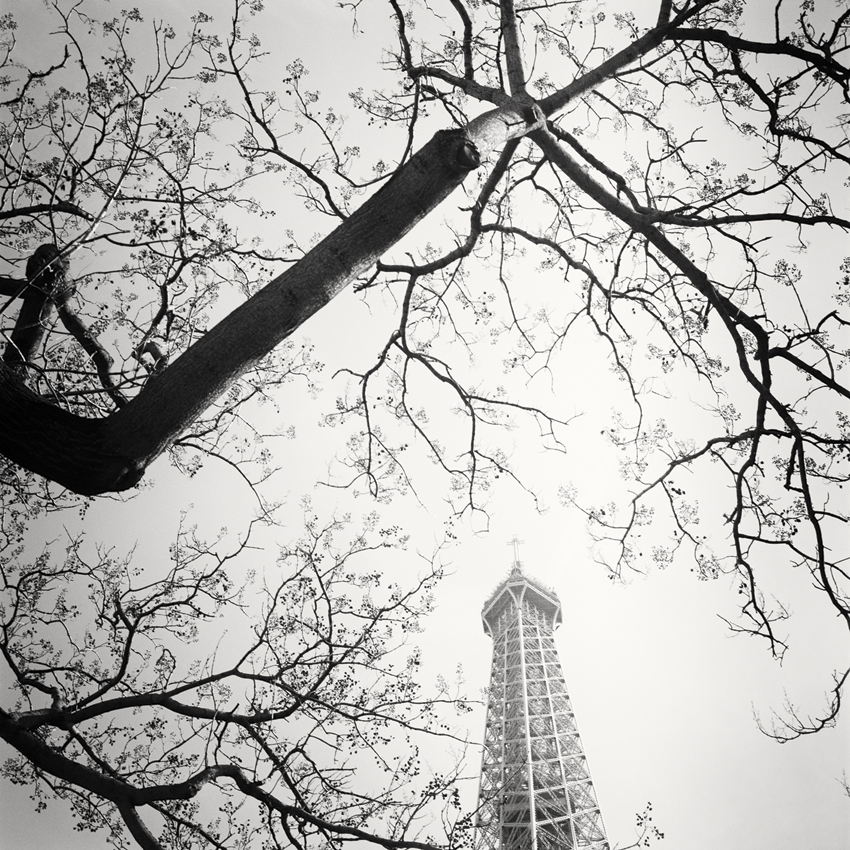 Tree and the Tower, Paris, France 2017 - Limited Edition Gelatin Silver Print No.: 11850