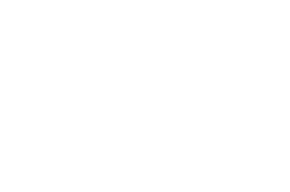 FICG-Mexico - March 8 - 15, 2019ALL INFO HERE (& Below)