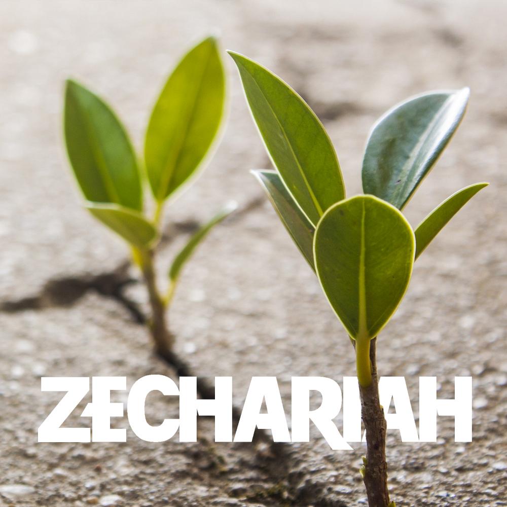 Zechariah_Soundcloud.jpg