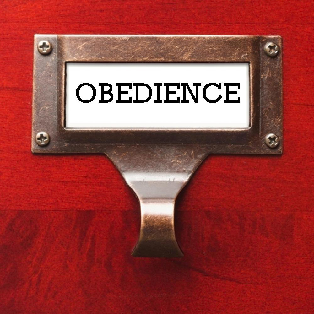 Obedience_Soundcloud.jpg