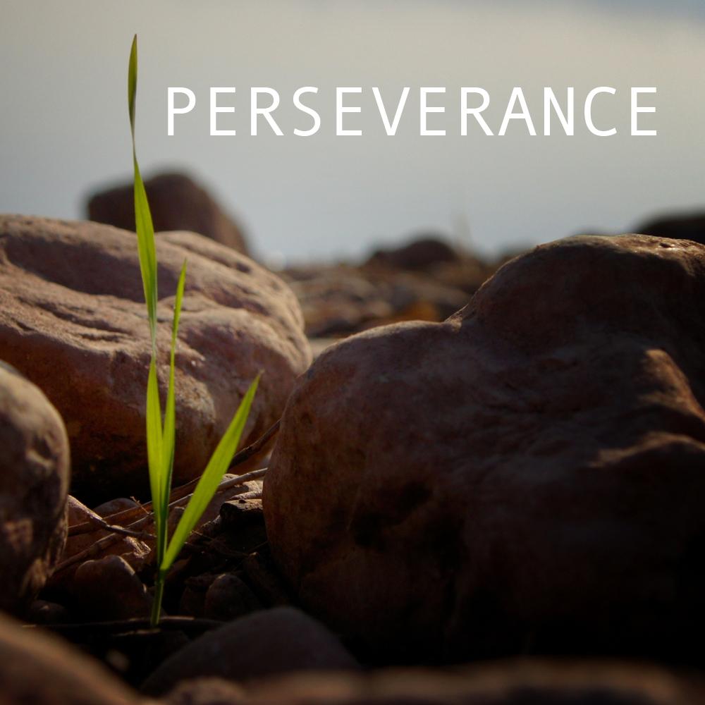 Perseverance_Soundcloud.jpg